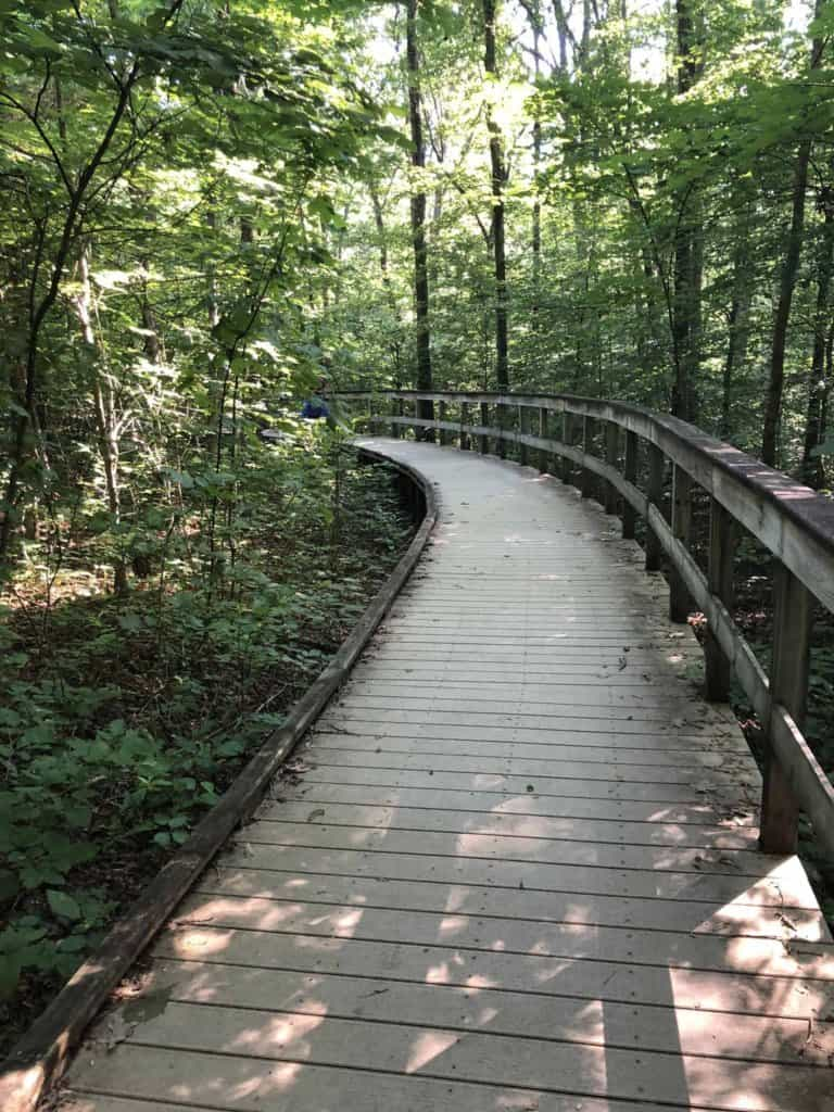 Boardwalk to Sand Cave