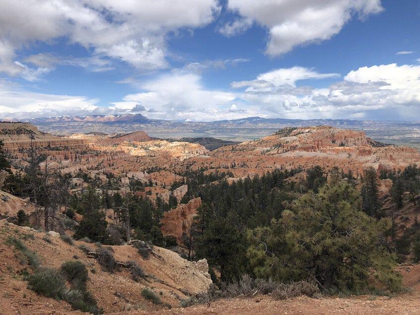 Overlooking hoodoos in Bryce Canyon National Park