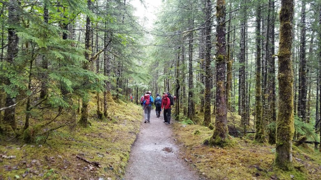 Hiking in Alaska in the Tongass National Forest