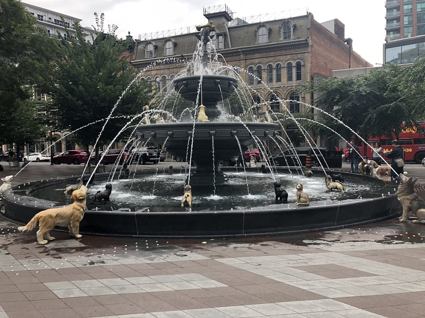 Dog Fountain at Berczy Park