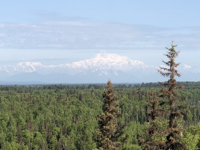 View of Denali during the day